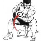 Bicepsler Uzamaz!